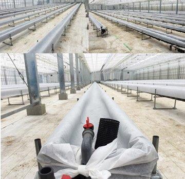 しあわせファーム トマトハウス 植え替え作業