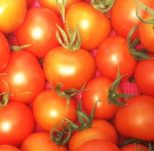 しあわせファーム トマト