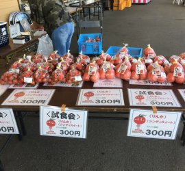 しあわせファーム トマト販売